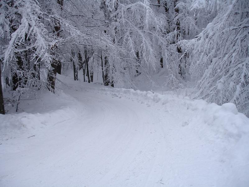 http://georgi.unixsol.org/mypics/winter_road1.jpg